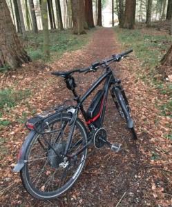 Das Bild zeigt die Thudbuster LT auf einem Trekking E-Bike.